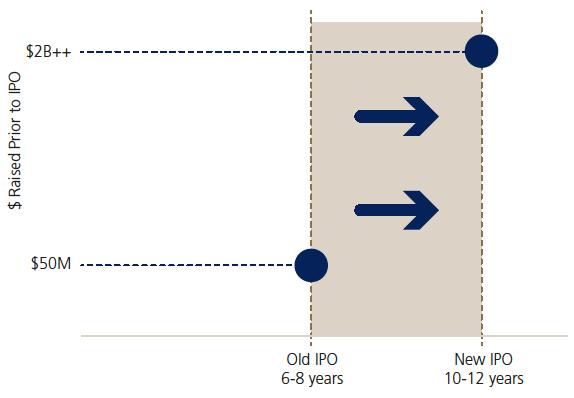 Portfolio Manager's Report – Hansa Investment Company Limited